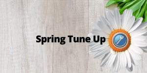 Business Spring Tune Up